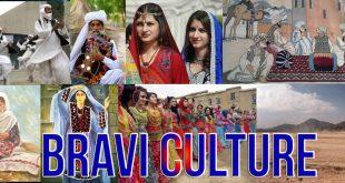 Brahvi Culture