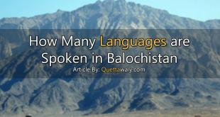 languages spoken in balochistan