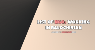 list of ngos working in balochistan