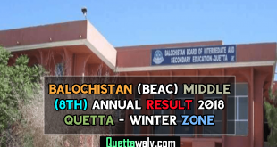 Balochistan (BEAC) Middle (8th) Annual Result 2018 Quetta - Winter Zone