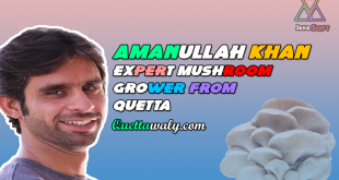 Amanullah Khan Expert Mushroom Grower from Quetta