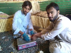 Amanullah Khan Mushroom Firm Owner Quetta