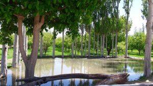 Garden of Balochistan
